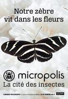 Micropolis: LE FESTIVAL des PAPILLONS