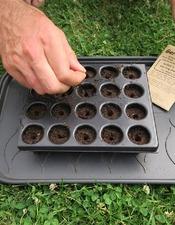 Je démarre mon jardin en permaculture avec Joseph Chauffrey - CPIE