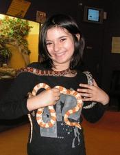 Stage découverte des reptiles