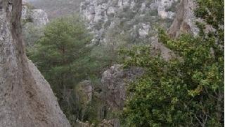 Roc et Canyon - Randonnée - Orientation - Trail - Millau