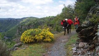 Anatole Rando Ane Randonnée avec un âne - Peyreleau