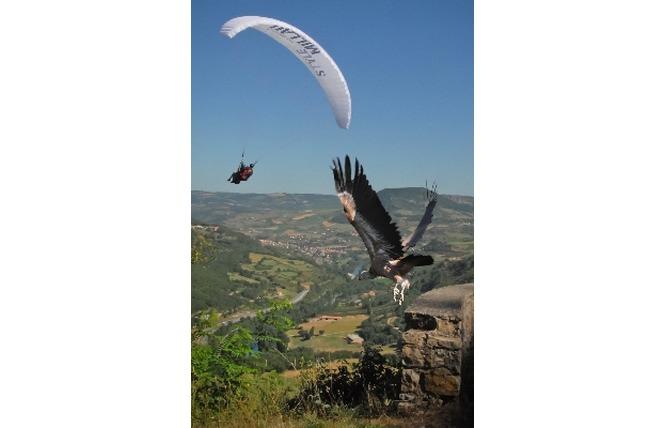 Airzone Parapente 2 - Millau