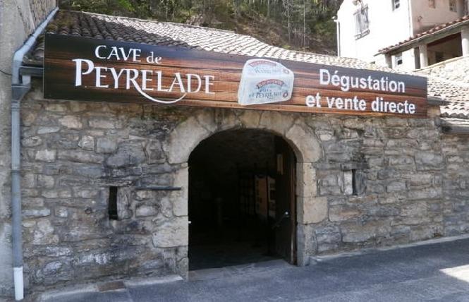 Bleu des Causses - Caves de Peyrelade 6 - Rivière-sur-Tarn