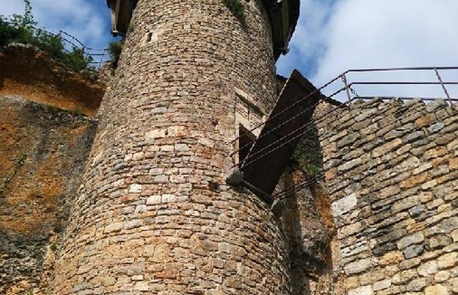 Château de Peyrelade 14 - Rivière-sur-Tarn