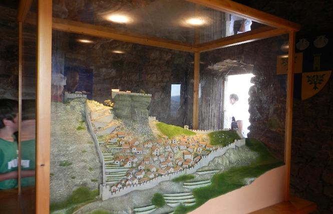Château de Peyrelade 17 - Rivière-sur-Tarn