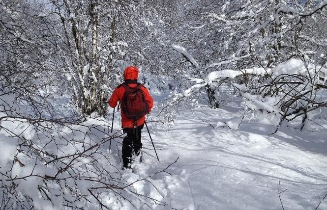 Randonnées Millau - Raquettes à neige 2 - Millau